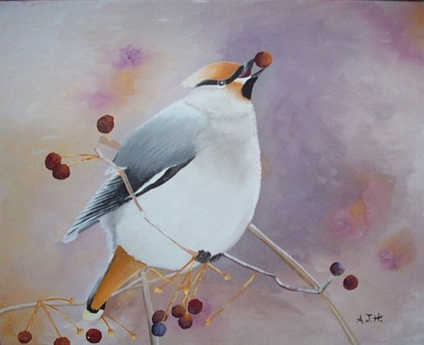 http://www.artiste74.com/grandes%20images/animaux/animaux/Oiseau-07.jpg